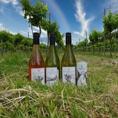 Cotswold Hills wine
